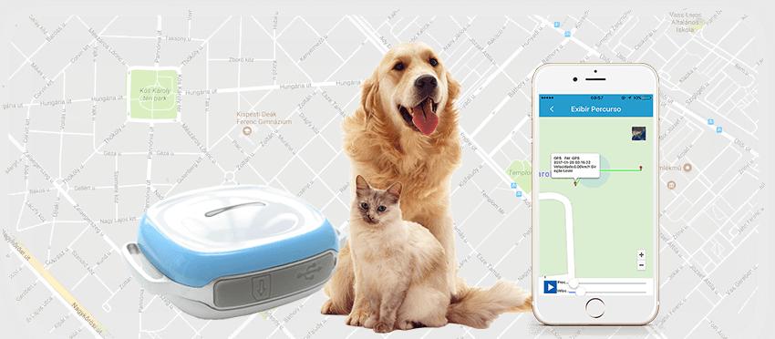 GPS nyakörv - kutya, macska, kisállat nyomkövetés valós időben